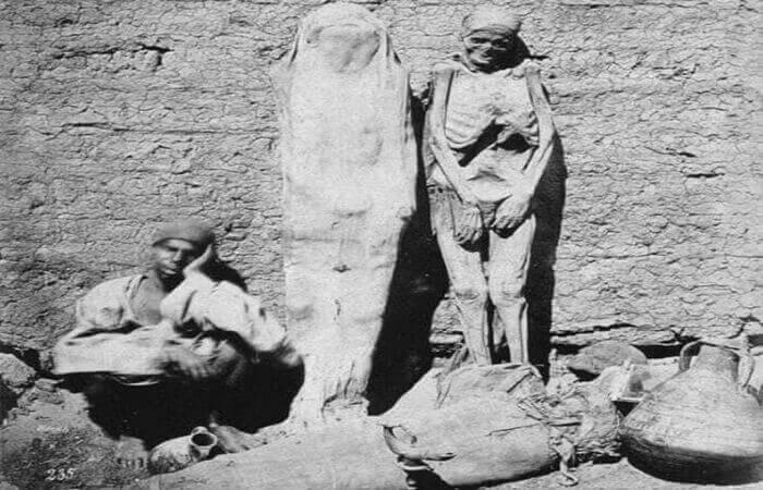 mummies sale